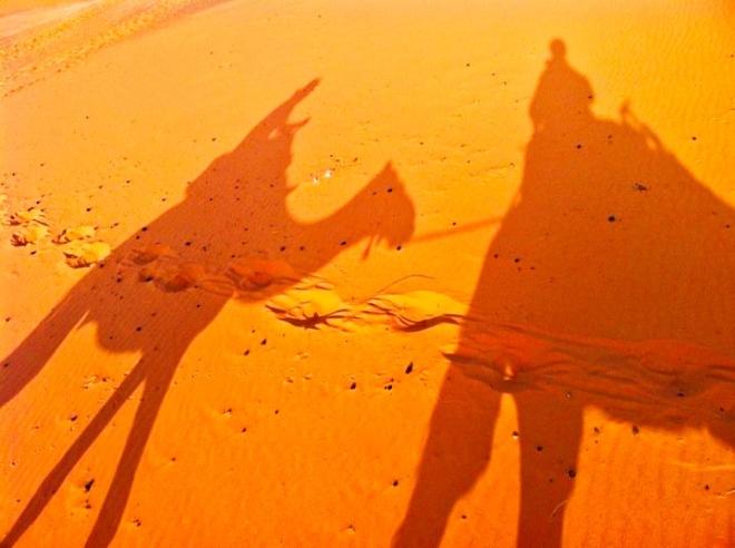 dunas camelo marrocos