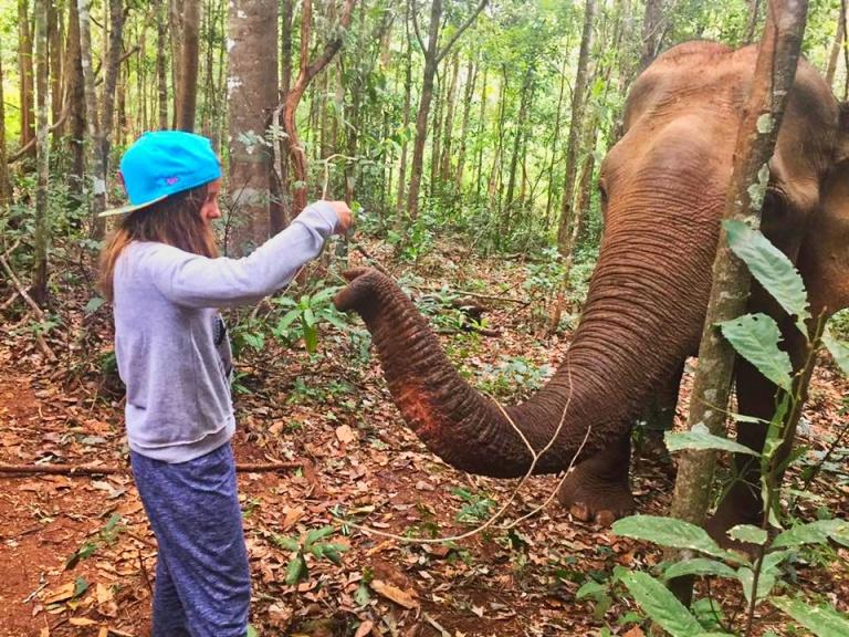 mané e elefante .jpeg